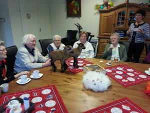 Dagopvang voor ouderen